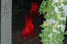 Red Reeds at Night